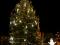 Libochovice mají nejhezčí vánoční strom